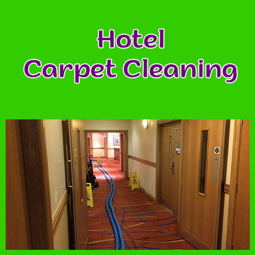 hotel carpet cleaning manchester image